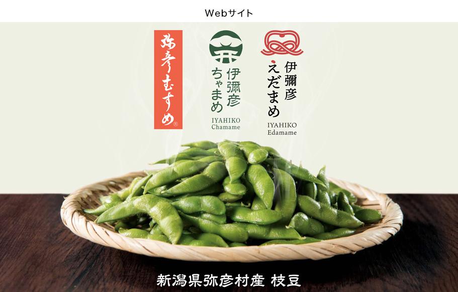 弥彦村産枝豆ブランディング-8